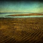 Biloxi Low Tide by Jonicool