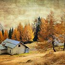 Textured Autumn Colors of Dolomites by Francesco Malpensi