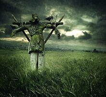 Scarecrow by photo-kia