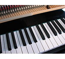 Section of Piano Keyboard Photographic Print