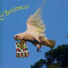 Art--card. Christmas Greetings by flexigav
