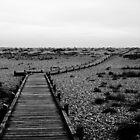 Walkway - Dungeness Beach by PhotoBearUK