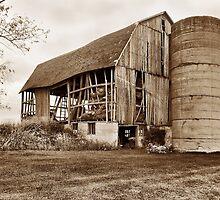 This Old Barn by Usha Ganesh