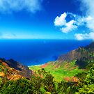 Koke'e Panoramic by Benjamin Padgett