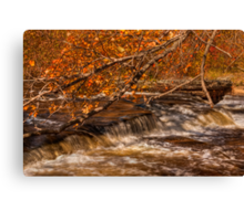 Autumn at Shohola Falls Canvas Print