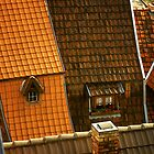 Roof lines - Germany by Hans Kawitzki