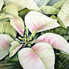 Christmas Poinsettias by Bobbi Price