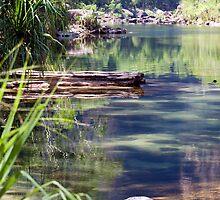 Still Waters - Kakadu, Northern Territory by Jenny Dean