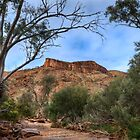 Bluff - Mount Chambers Gorge - South Australia by Jeff Catford