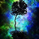 Mangrove dreams 2.  by DaveBassett