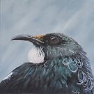 Looking at you - tui by Pam Buffery