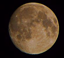 MOON 11-19-10 by David Dehner