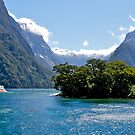 Milford Sound, South Island, New Zealand. by johnrf