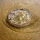 Jelly Swirl by Keith Richardson