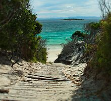 Lead the Way - Promise Bay, Tasmania by Step9