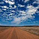 The Outback by Peter Doré