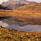 Beautiful Blea Tarn by Trevor Kersley