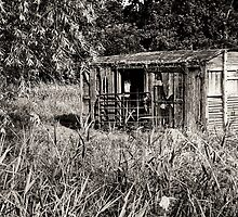 Country Living by BizziLizzy