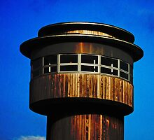 Observation tower, Slimbridge, Gloucester, UK by buttonpresser