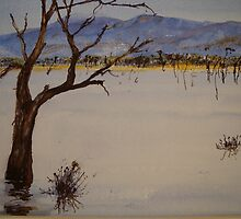 Lake Fyans 2 - Grampians - Victoria by Kay Cunningham