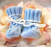 Baby Shoes by Amanda O'Halloran