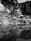 Canyon Wall Reflection at Lake Powell ~ Black & White by Lucinda Walter