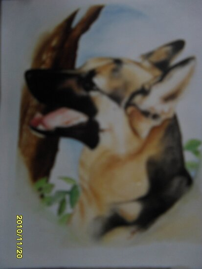 Police Dog who took the bullet by lynnieB