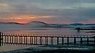 Tomales Bay, California Sunrise by Scott Johnson