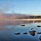 Fall At Crystal Lake - Mist Rising by T.J. Martin