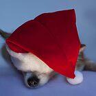 Sleepy Christmas Greetings by MayJ