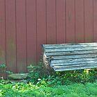 Bench by the Barn by Nicole Jeffery