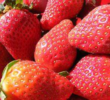 Strawberries by Mountaingirl
