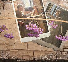 fading memories by olga  hutsul
