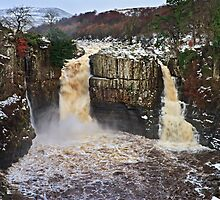 Winter, High Force - Upper Teesdale UK by David Lewins