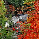 AUSABLE IN OCTOBER by MIKESANDY