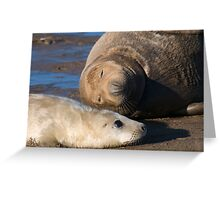 I'm NOT a Pillow Mom... Greeting Card