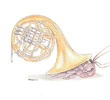 Herbert of the Travelling Crustacean Brass Band by mevagh