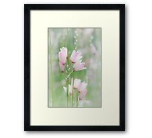 Soft Flowers Framed Print