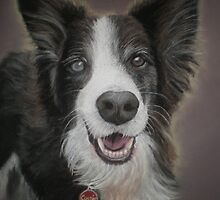 My blue and brown eyed girl - Cassie by Kerry Jackson