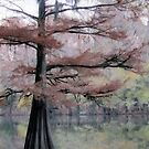 Autumn Cypress by suzannem73