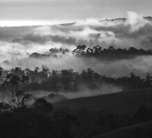 """'Mist on the Move"""" by debsphotos"""