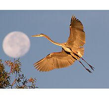 Over the Moon Photographic Print