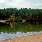 Reflections of Autumn by Paul Gitto