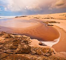 Interview River, Tarkine Coast, Tasmania by phoelen