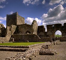 Hore Abbey Ireland by Michael  Swatt