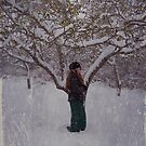 Maiden in the snowstorm by Laurie McClave