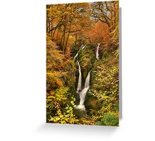 Stock Ghyll Force Greeting Card