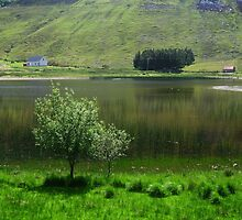 Lake idyll in green  by Karin  Funke