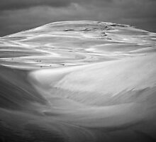 Giant Dune, Grant Kench by Tarkine Trails Tasmania