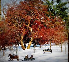 Sleigh Ride In The Snow by Linda Miller Gesualdo